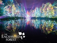 Enchanted Forest - Lochs & Autumn Gold